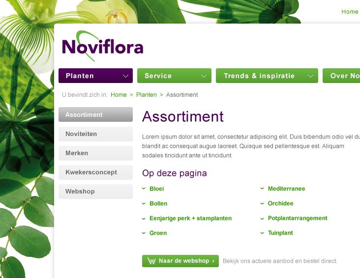 Noviflora website